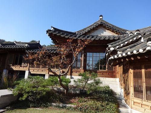 Tree furn museum